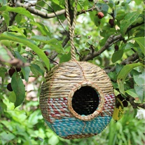 Artisan Bird Nester Anita