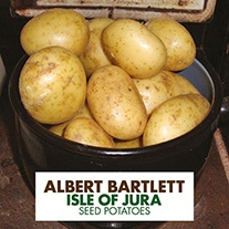 Potato (Maincrop) Isle of Jura