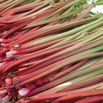 Rhubarb Valentine