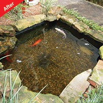 Viresco Aqua Pond Clear Including Free Nitrate Test Kit