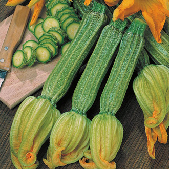 Courgette Romanesco Vegetable Seeds