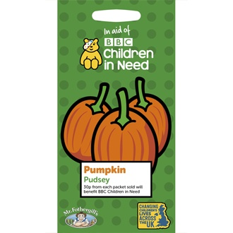 Children in Need Pumpkin Pudsey