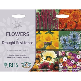 RHS Drought Resistant Flowers Collection