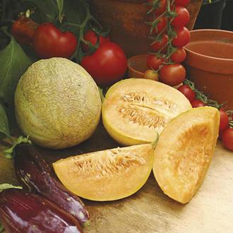 Melon Emir F1 Seeds