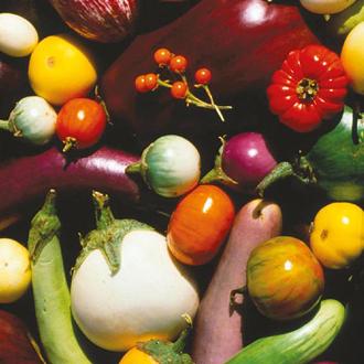 Aubergine Mixed Seeds