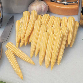 Sweet Corn Minipop F1 Seeds