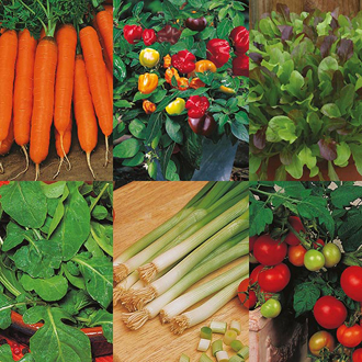 Summer Vegetables Seed Collection