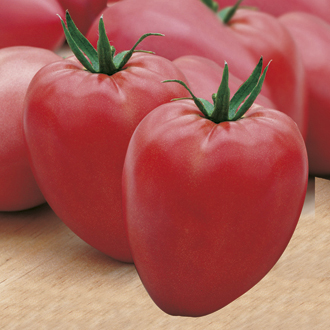 Tomato (Elongated Beefsteak) Cuor di bue Seeds