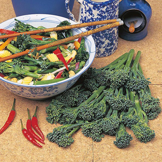 Broccoli (Sprouting) Tenderstem Green Inspiration F1 Seeds