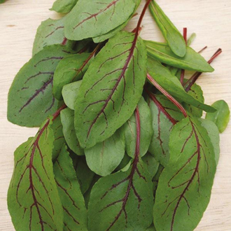 Salad Leaves Sorrel Red Veined
