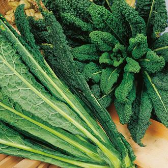 David Domoney, Get Growing Kale