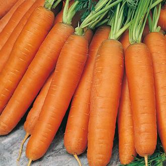 David Domoney, Get Growing Carrot Nantes