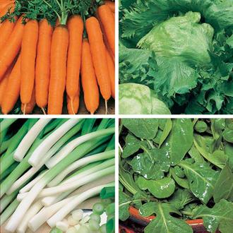 David Domoney, Get Growing Summer Salad