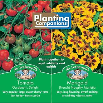 Planting Companions - Tomato & Marigold Seeds