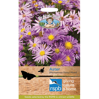 RSPB Aster (Michaelmas Daisy) Mixed Seeds