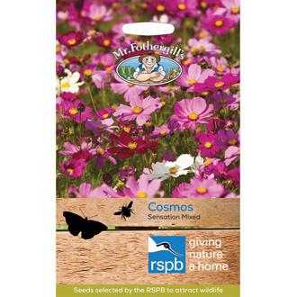 RSPB Cosmos Sensation Mixed Seeds