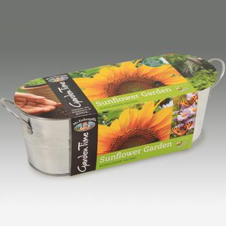 Garden Time Range - Windowsill Sunflower Garden Kit