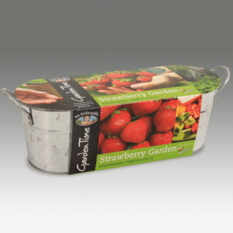 Garden Time Range - Windowsill Strawberry Garden Kit