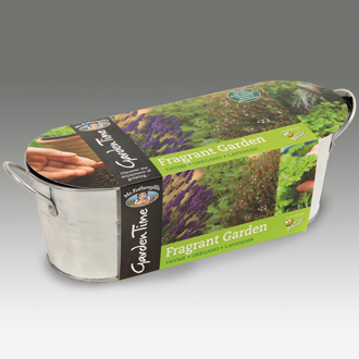 Garden Time Range - Windowsill Fragrant Garden Kit
