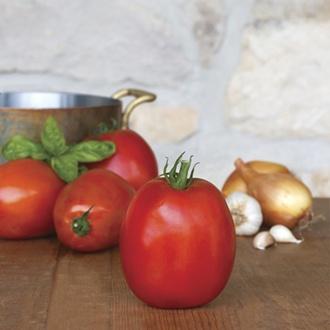 Tomato Super Sauce F1