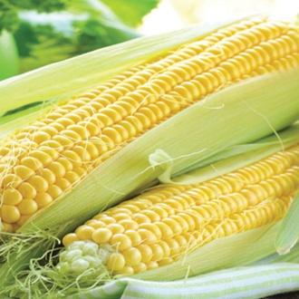 Sweet Corn Rising Sun F1 Vegetable Seeds