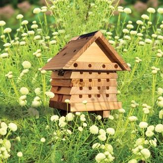 Interactive Solitay Bee Hive