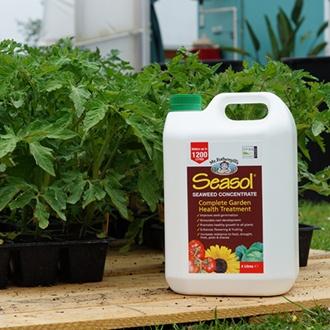 Bulk Deal Seasol Organic Seaweed Concentrate 4ltr