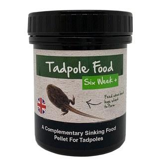 Tadpole (6 Weeks +) Food 3 x 80g