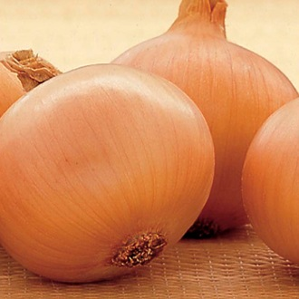 Onion Setton AGM Sets