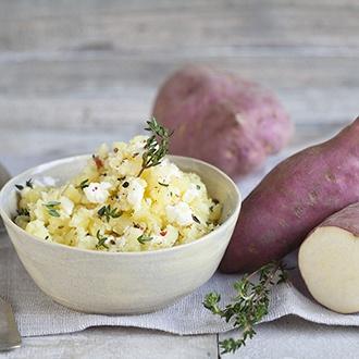 Sweet Potato Erato Gusto Plants