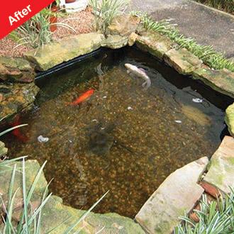 Viresco Aqua Pond Clear Including Free Nitrate Test Kit
