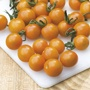 Tomato (Cherry) Orange Paruche F1 Seeds