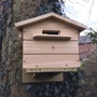 Beepol Tree Villa & Bumblebee Hive