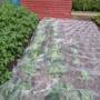 Enviromesh Plant Protection Netting