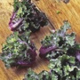 Kalettes Mixed F1
