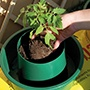 Growpots Watering and Feeding System