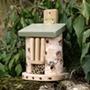 Friendly Bug Barn