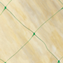 Pea And Bean Netting 6m x 1.7m