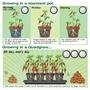 Quadgrow Planter - Watering Schedule
