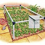 Strawberry Cage - Standard 3'x6'
