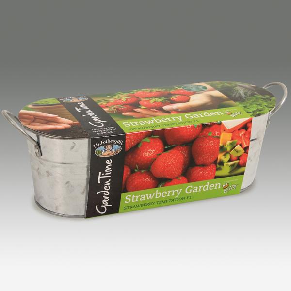 Awesome Garden Time Range   Windowsill Strawberry Garden Kit