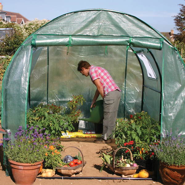 Polytunnel from start to 3 months - YouTube