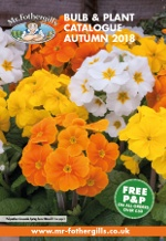 Seed Catalogue Request - Order A Free Mr Fothergill's Seed