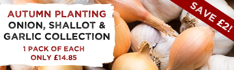 Autumn Planting Onion, Shallot & Garic Collection