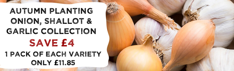 Onion, Shallot & Garlic Collection