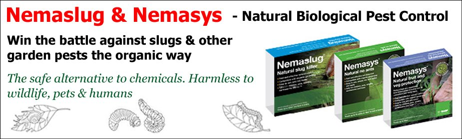 Nemaslug and Nemasys