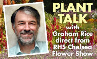 Graham Rice's Blog Posts
