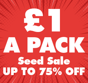 £1 a Pack Seed SALE