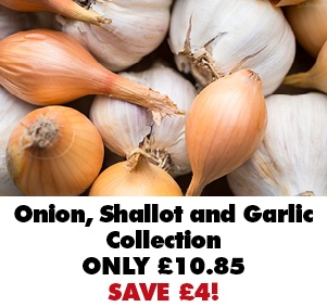 Onion, Shallots & Garlic Collection