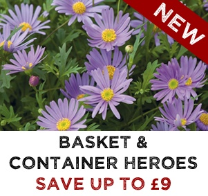 NEW Basket & Container Heroes